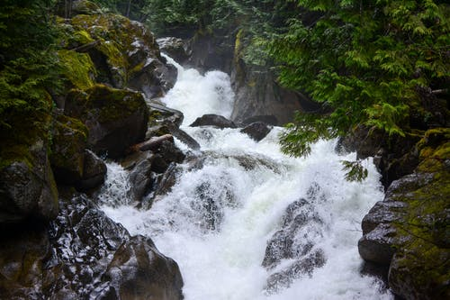 Free stock photo of nature, rapids, rocks, waterfall
