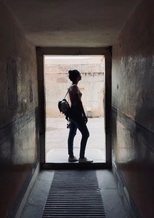 Kostenloses Stock Foto zu angriff, drinnen, dunkelheit zur lebenheit ......