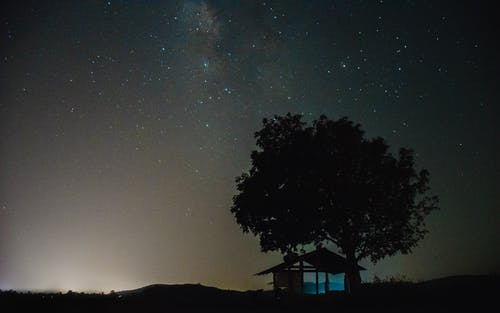 Silhouette of Tree and House Under Starry Night