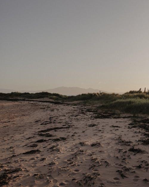 Free stock photo of beach, clear blue sky, sandy, sandy beach