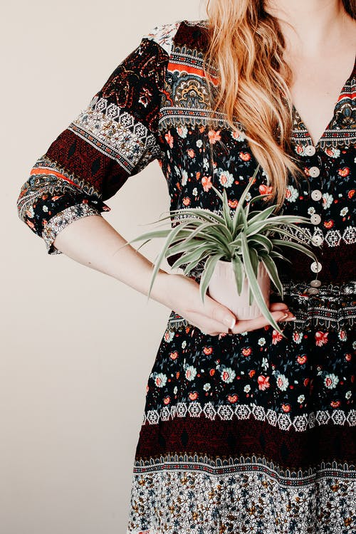 Woman in Black Red and White Floral Dress Holding Green Plant