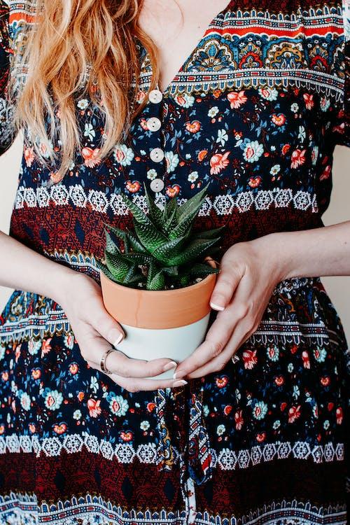 bayan, bitki, elbise, fabrika içeren Ücretsiz stok fotoğraf