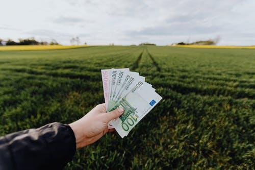 คลังภาพถ่ายฟรี ของ 100 ยูโร, 500 ยูโร, faceless, กลางวัน