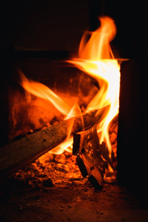 Foto stok gratis Abu, api, api unggun