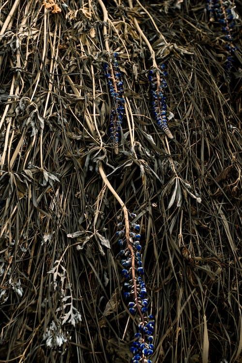 Gratis stockfoto met abstract, abstracte vormen, afval, atmosferisch