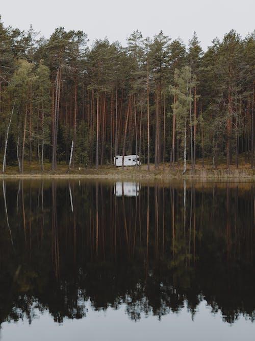 Camper Van Near a Lake