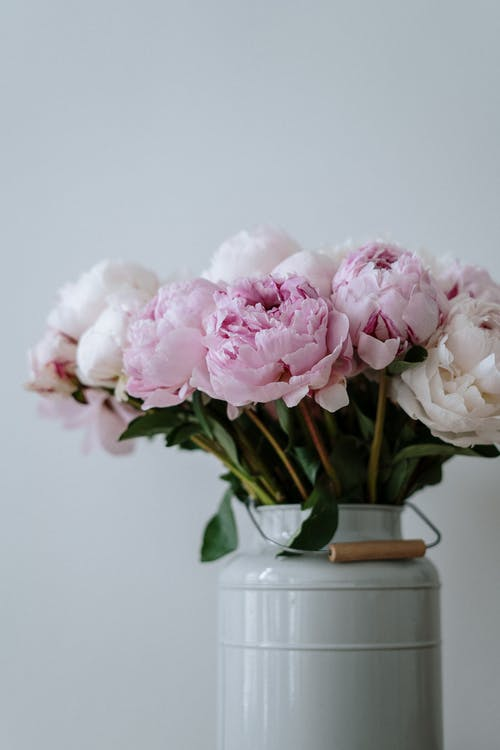 Pink and White Flowers in White Ceramic Vase