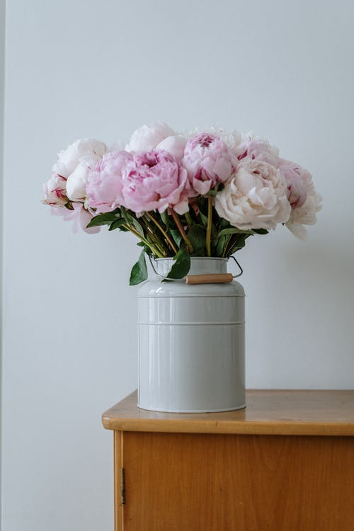 Pink Roses in White Ceramic Vase on Brown Wooden Table