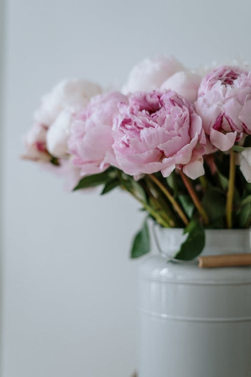 Pink Flowers in White Ceramic Vase