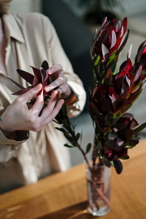 Person Holding Red and White Flower Bouquet
