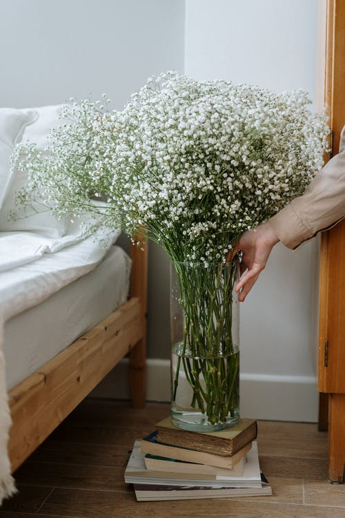 Fotos de stock gratuitas de adentro, amanecer, amor, arreglo floral