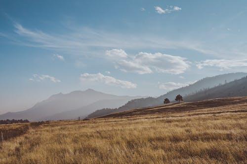 Foto d'estoc gratuïta de a l'aire lliure, abrupte, agricultura, camp