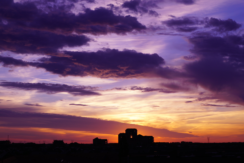 Silhouette of Hays