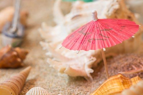 お土産, 傘, 巻き貝, 砂の無料の写真素材
