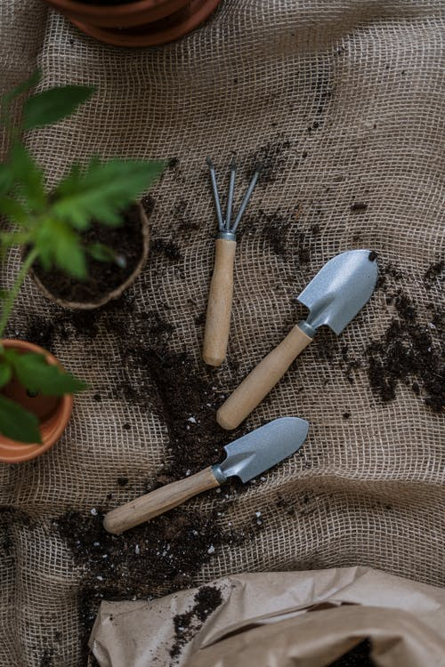 Top View Photo of Gardening Tools