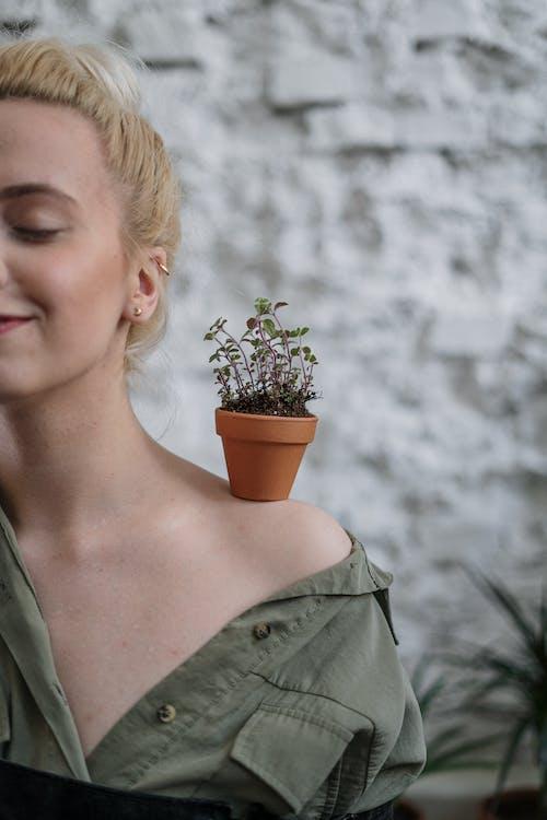 Kostenloses Stock Foto zu anbau, blond, blumentöpfe