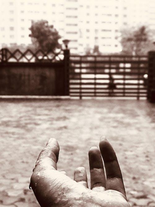 Foto d'estoc gratuïta de la pluja és només confetti del cel.