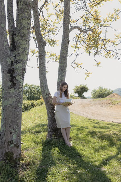 Woman Standing Beside Brown Tree While Holding Book