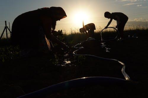 Free stock photo of akşam, güneş