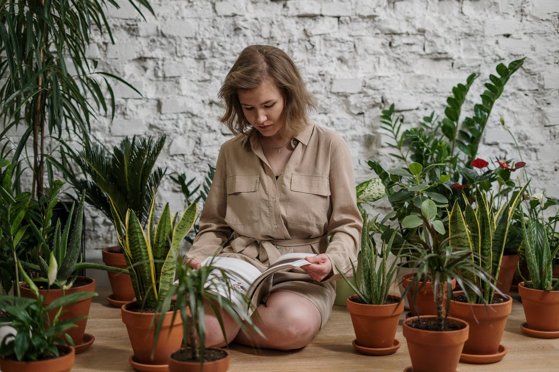 Woman Sitting While Reading Book Near Potted Plants