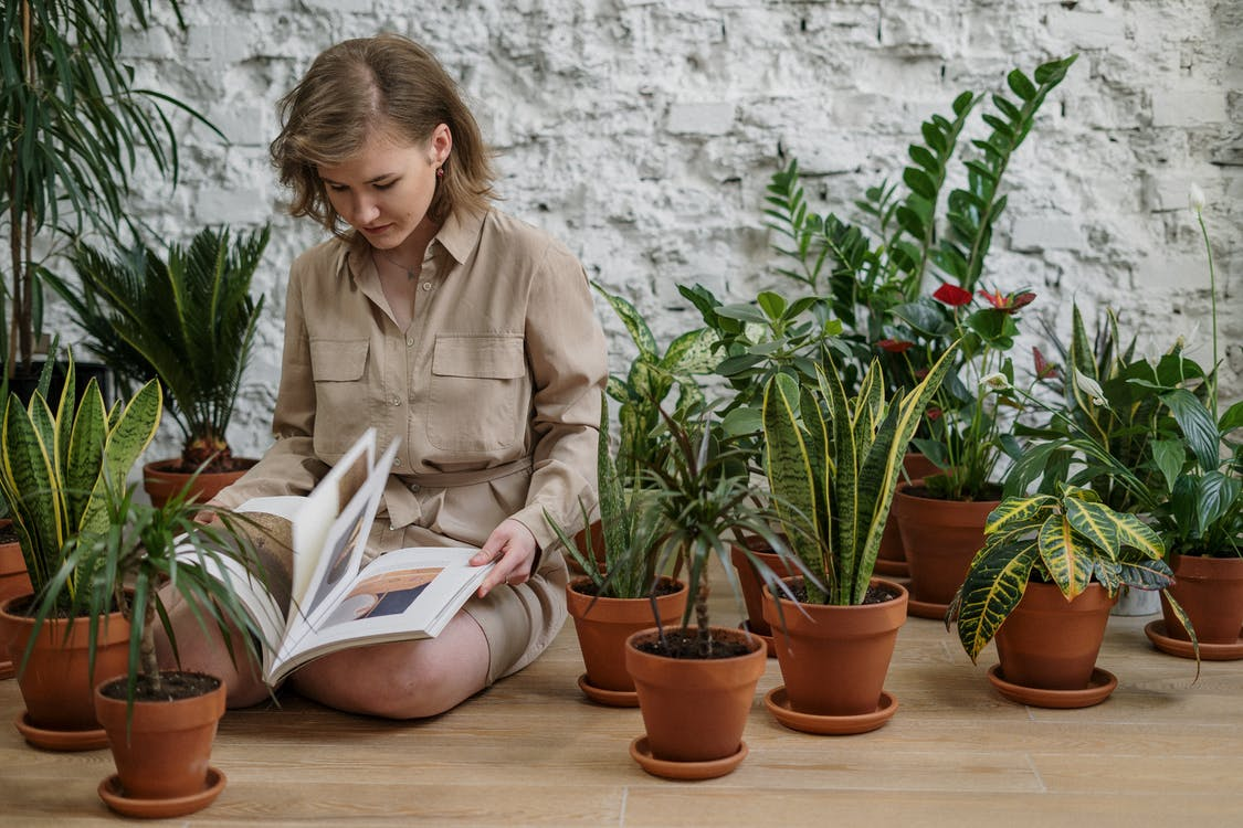 Woman in Brown Long Sleeve Shirt Reading Book While Sitting Near Plants