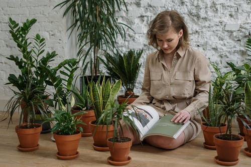 Woman in Brown Button Up Shirt Reading Book