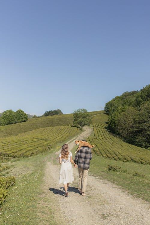 Lovely Couple Walking on Pathway With A Dog On The Man's Back