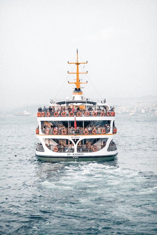 Gratis lagerfoto af båd, færge, hav, krydstogt