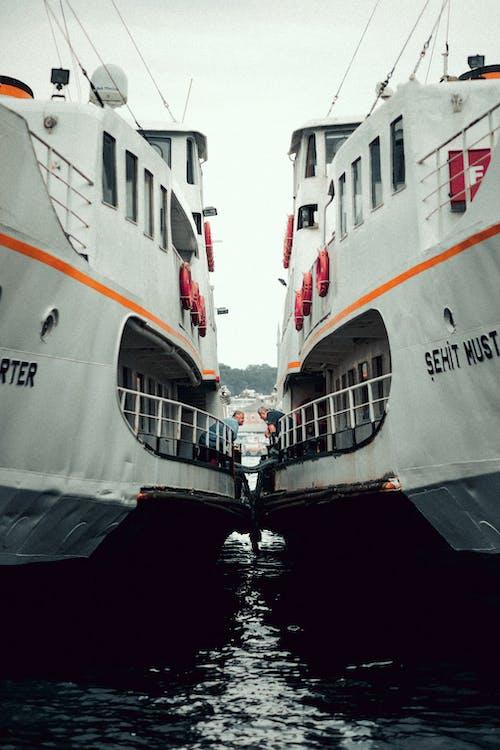 オーシャンクルーズ, クルーズ船, フェリー, ボートの無料の写真素材