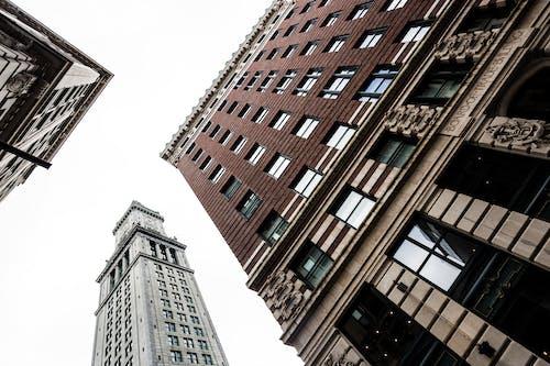 Foto profissional grátis de arquitetura, boston, construção, ladrilho