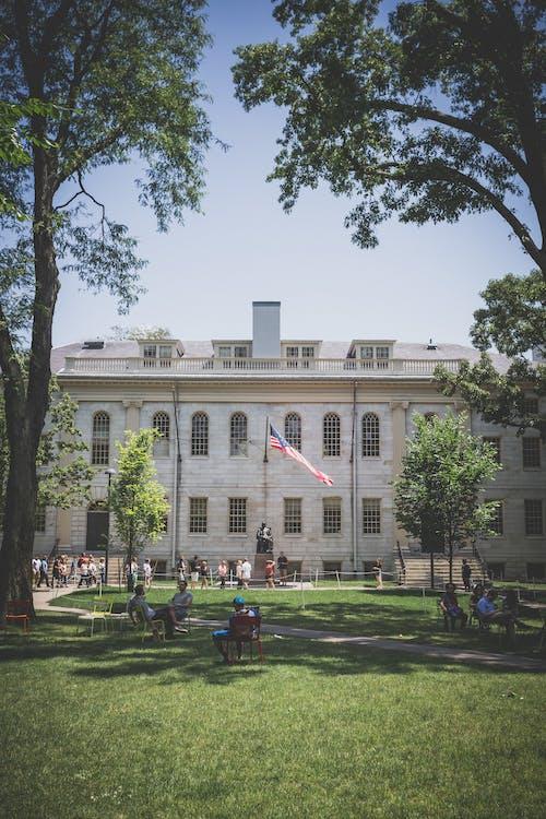 Foto profissional grátis de América, árvores, bandeira dos Estados Unidos, boston