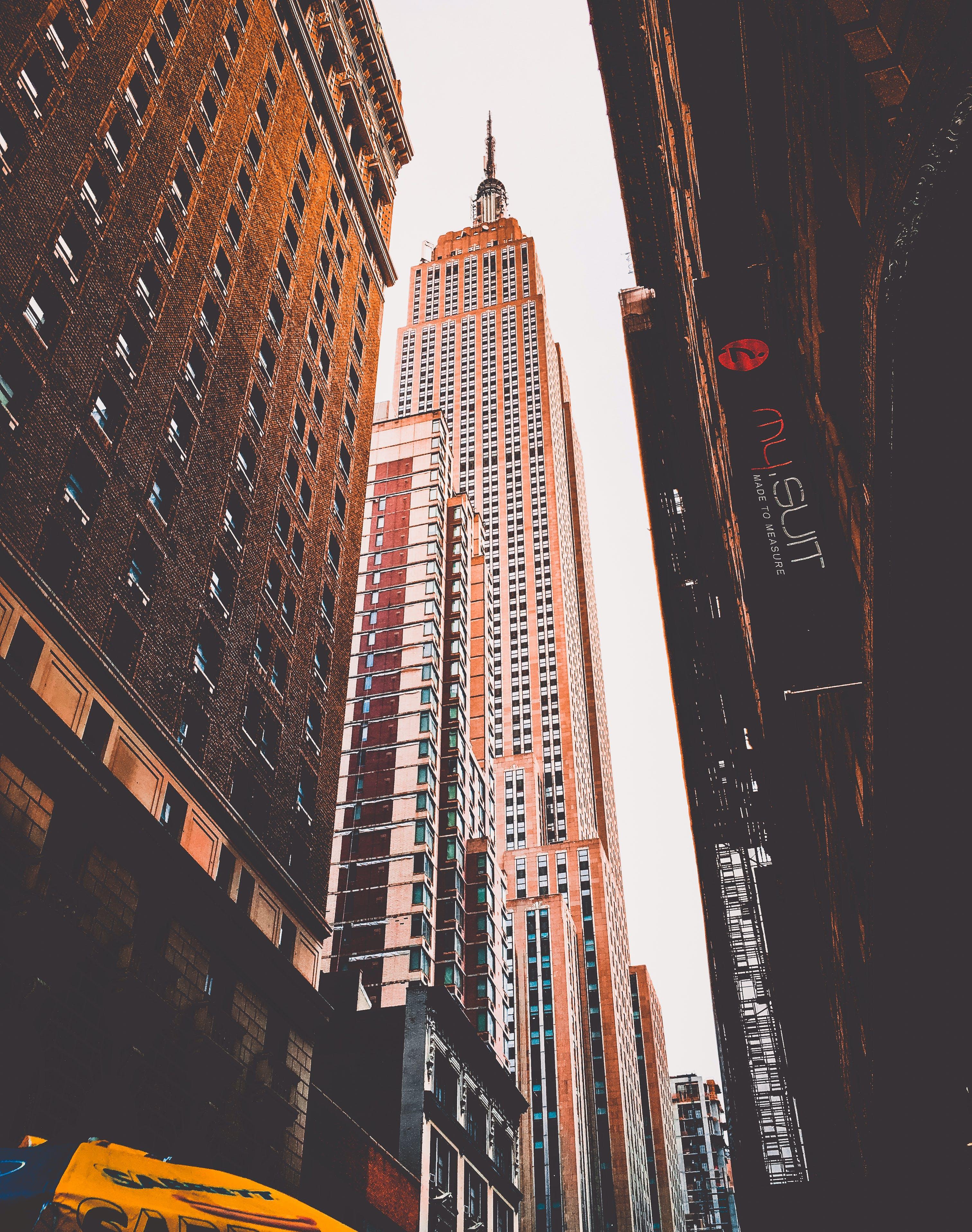 Gratis lagerfoto af appelsin, baggrund, bygning, empire state building