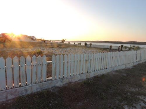 Ingyenes stockfotó Aranyló nap, esti nap, fakerítés, fehér kerítés témában