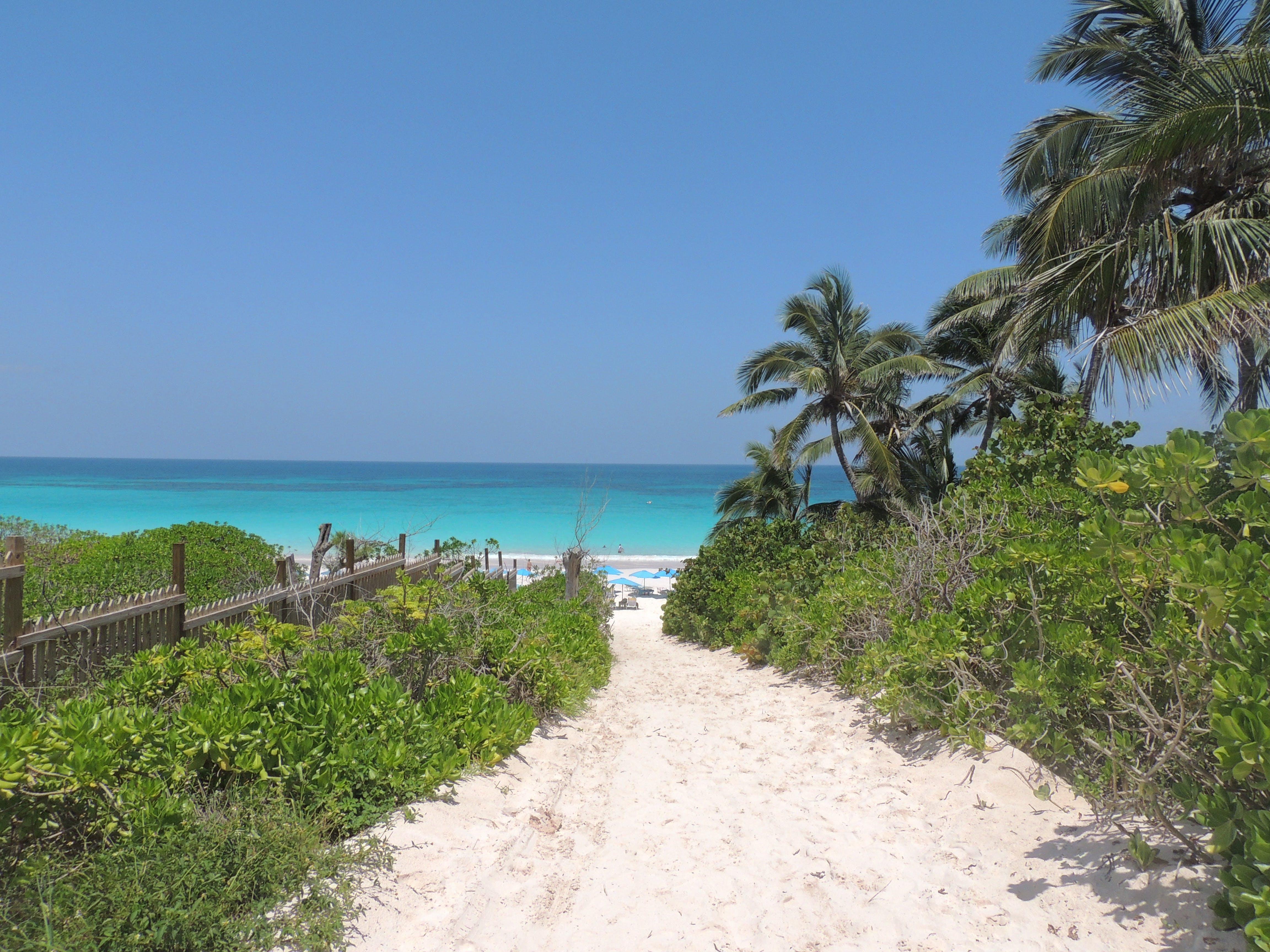 Free stock photo of beach, blue, foot path, ocean