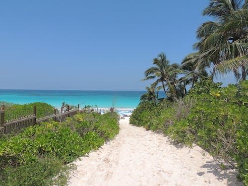 Ingyenes stockfotó homok, homokdűne, homokos strand, kék témában