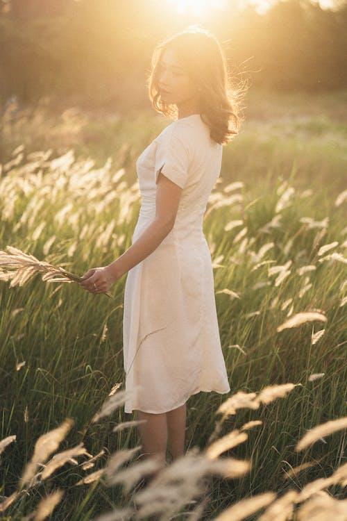 Dreamy woman in green field in sunshine