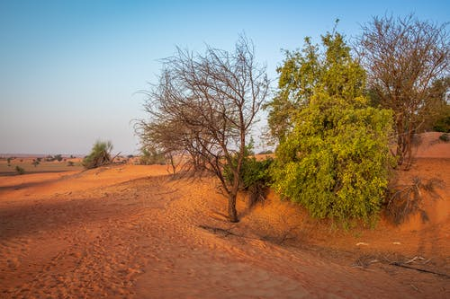 Free stock photo of desert, inspirational, red sand