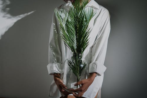 Person in White Robe Holding Green Plant