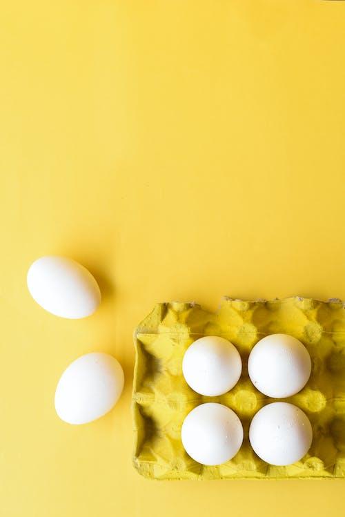 Foto stok gratis bahan, fotografi makanan, latar belakang kuning