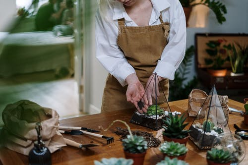 Woman in White Apron Holding Green Vegetable