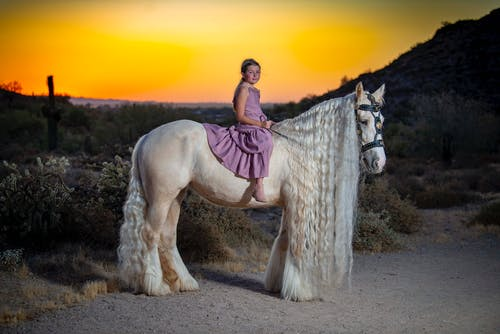 Photo of Girl in Purple Dress Riding White Horse