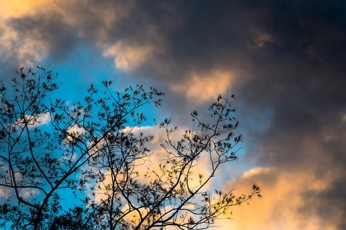 Free stock photo of background, blue, clouds, dark