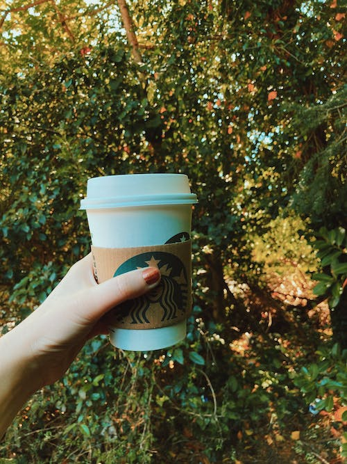 Person Holding Starbucks Disposable Cup