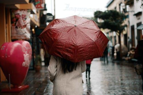 人, 多雨的, 後視圖 的 免费素材图片