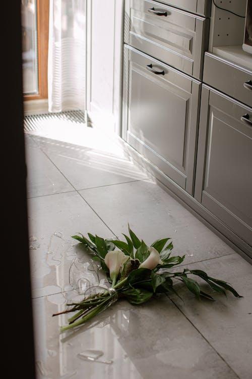 Green Plant on White Ceramic Floor Tiles