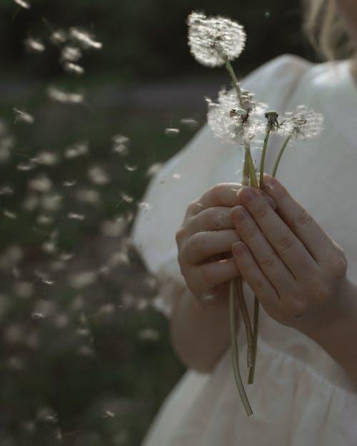Çiçekler, dikey, eller, esinti içeren Ücretsiz stok fotoğraf