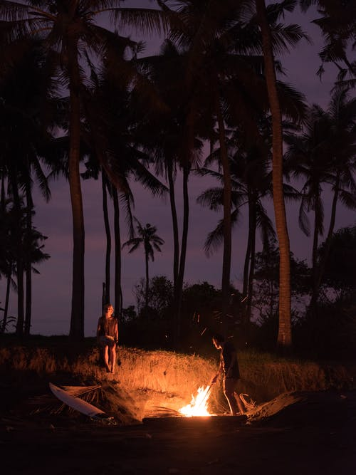 Anonymous travelers making fire on empty beach against palm tree silhouettes during romantic sunset