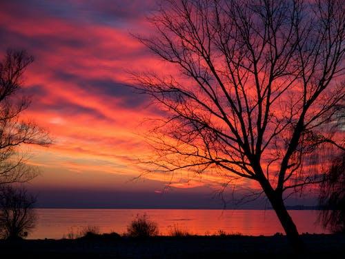 Free stock photo of beautiful sky, dramatic sky, dusk