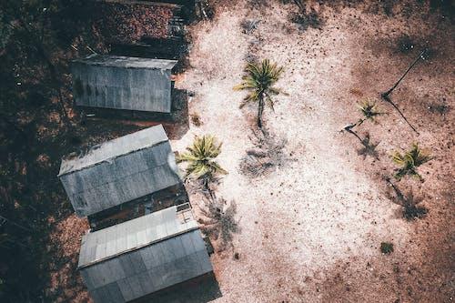 Gratis lagerfoto af arkitektur, beskidt, blad, bygning