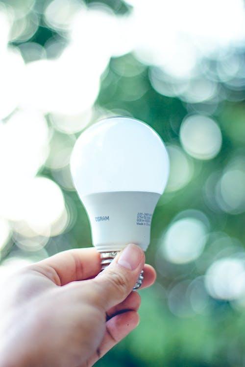 Hand Holding a White Light Bulb